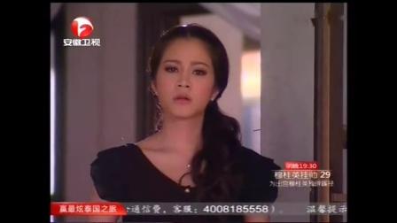 真爱无价国语版全集29中文版安徽卫视
