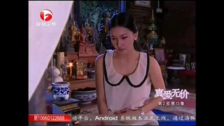 真爱无价国语版全集33中文版安徽卫视