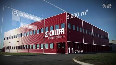 意大利卡莱菲公司