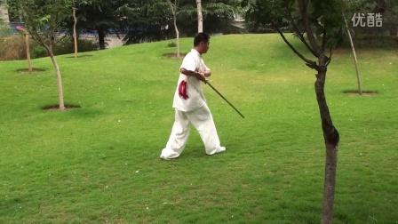 陈式49式太极剑-----郑州碧沙岗公园辅导站贺斌老师演练