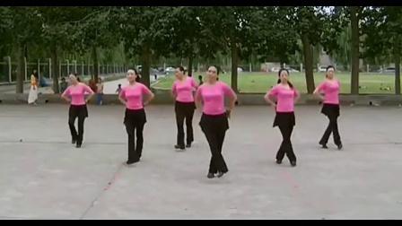 【广场舞全集】广场舞蹈视频大全 欢乐广场健身舞【超清】