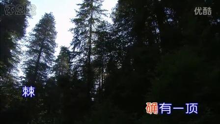 新编赞美诗_305_〈是否劳倦歌〉_KTV_高清_基督教怀恩堂-1