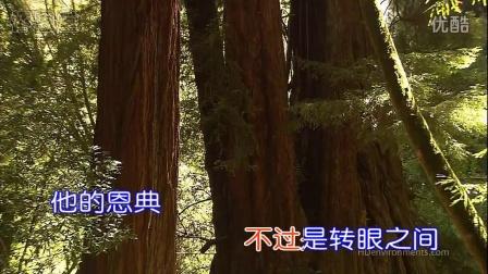 新编赞美诗_短歌24_〈一宿哭泣早晨欢呼〉_KTV_宽屏