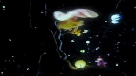 迪奥 Miss Dior 展览 21: 视频装置《西红柿和恰恰都别碰我》17
