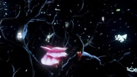 迪奥 Miss Dior 展览 33: 视频装置《西红柿和恰恰都别碰我》29