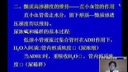 第 8 章-肾脏-05-(四川大学生理学)