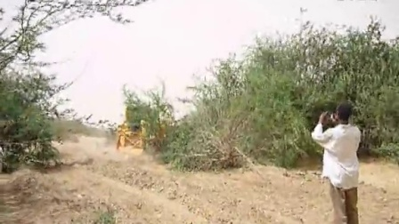 Bulldozer for bush clearance