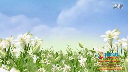 BJ31-高清季节花开动态LED背景素材 春季夏季 儿童动画背景