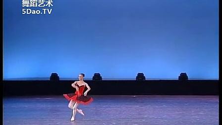 刘晨欣《堂吉诃德》变奏 芭蕾舞第十届桃李杯舞蹈比赛高清完整版