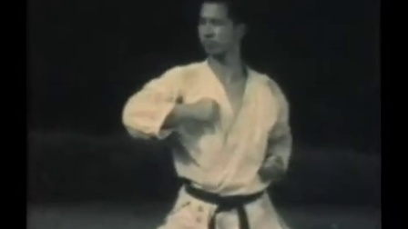 The Dynamic Techniques of SHOTOKAN  KARATE - 01
