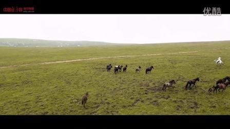 河南蒙古族自治县专题片:天堂草原 美丽河曲
