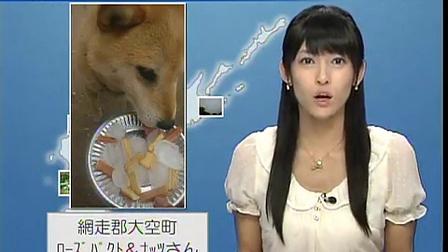 日本天气预报女主播超漂亮 山岸爱梨 北海道エリア 2011-08-31 夕