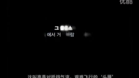 1、企业文化短片:一路同行大雁的故事中文2  '21''