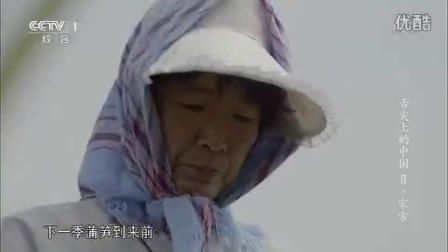 家常-蒲笋烧肉 虾籽焖茭白_高清