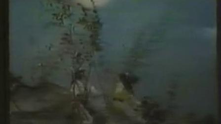 飞燕惊龙33