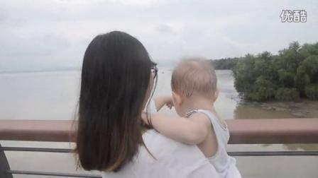 深圳湾看泥巴