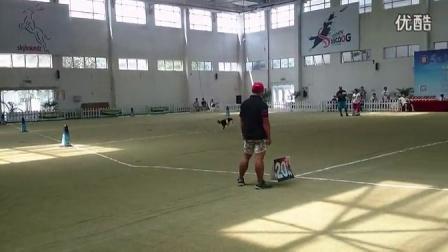 摩卡爸和黑妞20140830第二届skyhoundz距离赛
