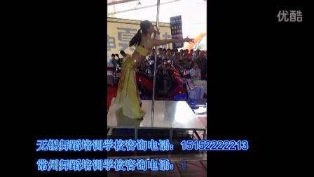 05常州华翎舞蹈培训学校 学员钢管舞演出视频 抒情钢管舞视频