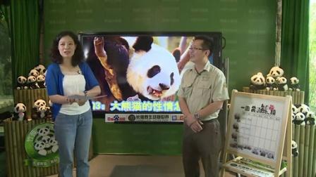 9月10日熊猫三胞胎直播