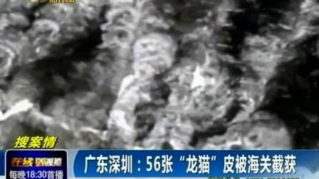 """广东深圳 56张""""龙猫""""皮被海关截获140918在线大搜索"""