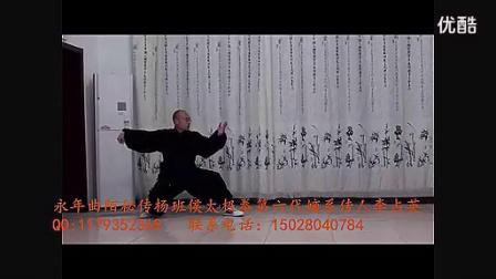 杨式太极拳发劲还真猛(不看后悔)_标清