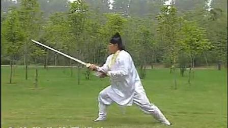 武当势剑2