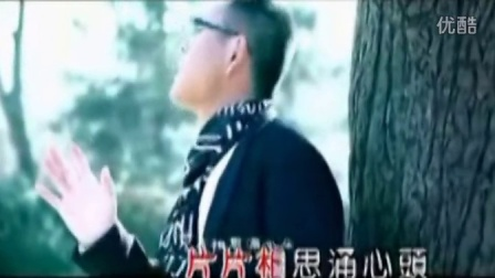 祁隆-醉相思(巴乌)