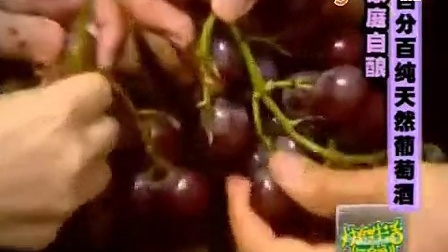 在家自制葡萄酒_葡萄酒的制作方法视频_学做菜视频在线观看_-_糖豆网