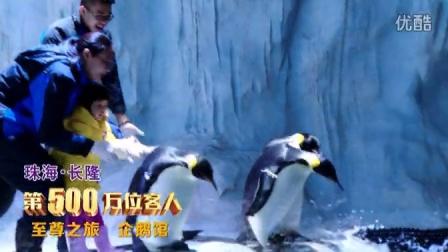 珠海长隆500万尊贵之旅企鹅馆篇