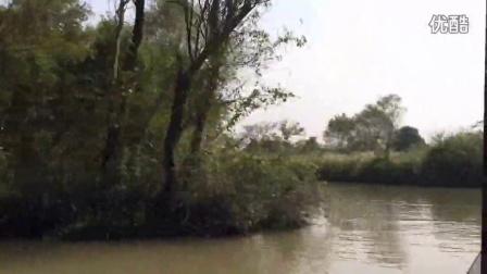 3分钟带你游西溪湿地