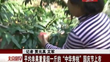 """平均单果重量超一斤的""""中华寿桃""""国庆节上市[您早]"""