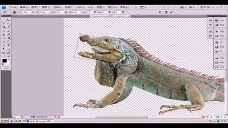 室内设计专业包装设计师广告设计与制作课程