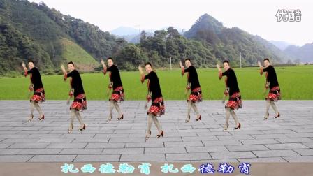 沅陵燕子广场舞《藏家乐》(附背面演示)