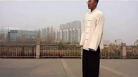 杨大卫讲解传统杨式太极拳85式---第8课手挥琵琶_标清