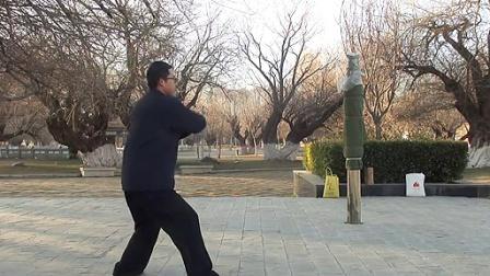 杨大卫讲解传统杨式太极拳八十五式-----第19课(25-27式)_标清