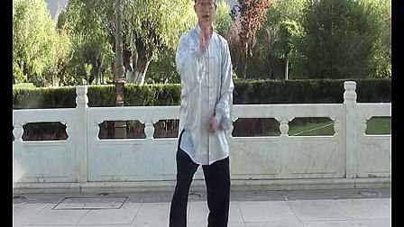 杨大卫讲解传统杨式太极拳85式---第14课倒撵猴_标清