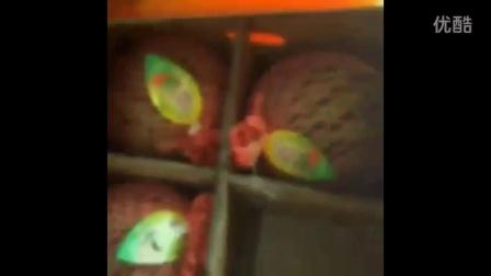 西瓜蛇果 香妃梨 荣记水果 进口水果批发 网上订购水果 进口水果礼盒 水果批发配送