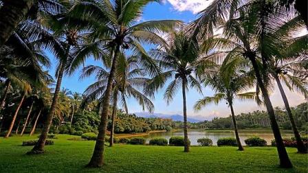 三亚兴隆热带植物园旅游风景图片
