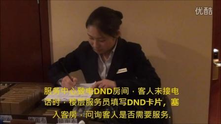 迪利特酒店 DND服务标准流程培训视频