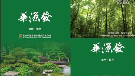北京最大的苗木市场-绿化苗木企业名录-园林企业黄页-企业名录大全就在华源发苗木视频网(4)