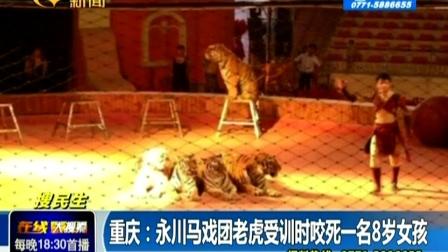 重庆 永川马戏团老虎受训时咬死一名8岁女孩141102在线大搜索