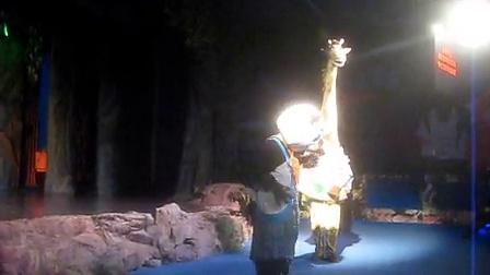 动物园里的人偶剧《动物总动员》
