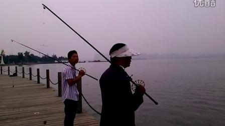 打甲鱼枪教学视频 港湾提供