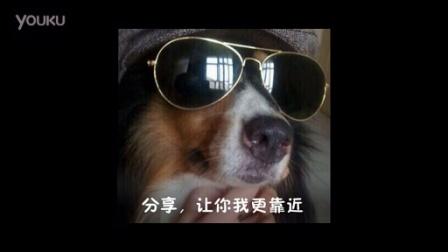 奥利奥最新主题曲-《满是心奇分享》-改编版- 中国风