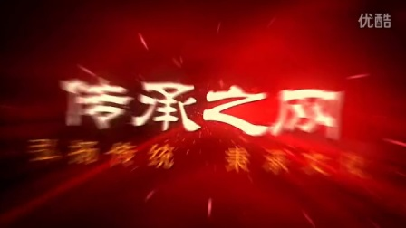 华夏收藏网十周年宣传片完整版