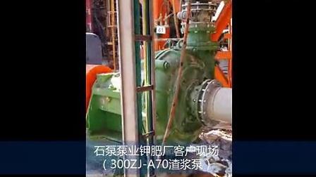 钾肥厂渣浆泵应用现场-青海钾肥厂