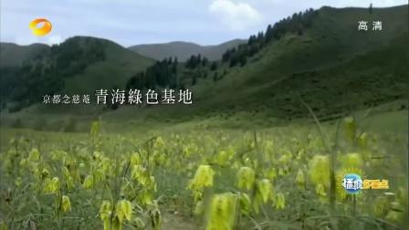 2015湖南卫视黄金广告资源招标会  三节目再添10.5亿冠名[播报多看点]