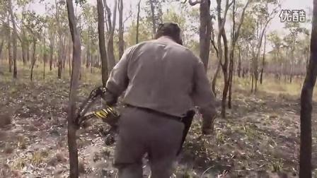 猎水牛复合弓狩猎