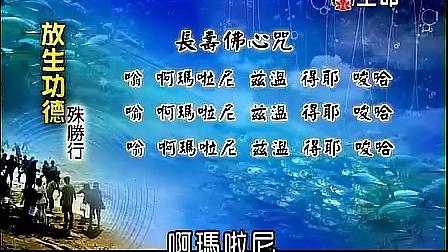 《长寿佛心咒》教念及功德利益--海涛法师讲解 佛山顺德财神酒店