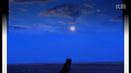 马头琴曲 月光下  ——马头琴演奏家 仟白乙拉 极品音乐